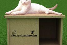 Kedi Evleri / Adore Mobilya Kedi Evleri