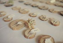 escort cards + table numbers.