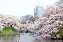 Location | Japan