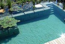 schwimmteich 2