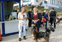 Hundstage Scharbeutz 2014 / Ein Ausnahme-Oktober-Wochenende mit bis zu 26. Grad sorgte bei den Hundstage-Teilnehmern für gute Laune. Hier ein paar Fotos von diesem AgilityEvent rund um den Hund.