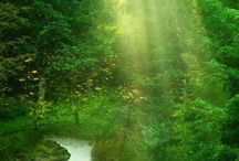 Fairy-scapes