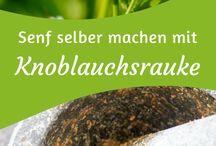 Heilkräuter Knoblauchrauke