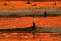 my love of orange... / by Candice Deutz