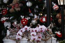 Santa's Collection