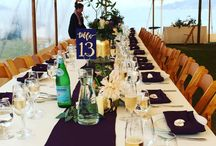 Marin Weddings / 0