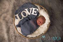 Newborn Photography by Krissie Marie Photography / Newborn Photography by Krissie Marie Photography