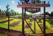 Greenville Gardens / Urban and rural gardens in Greenville, SC