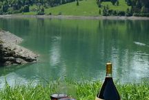 Wine and picnics / by Terry Conley