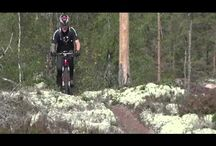 Mtb Trails in Sweden