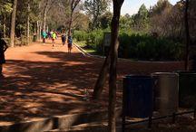 Runners / Todo lo que puedes pinear sobre runners ya sean lugares, zapatos de correr, accesorios, runners y más runners