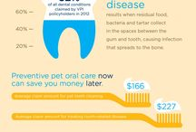 Dental Information for Pets
