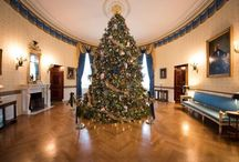 The White House - Decorating For Xmas / by Stems Florist