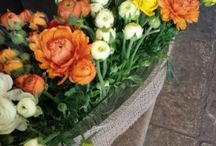 Favorite Blooms