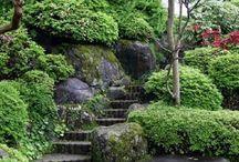 záhrada - v kopci