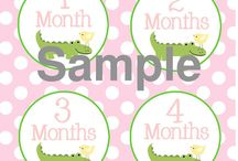 Monthly Growth Ideas for Gator Babies / Ideas on how to mark your little Gator's growth each month.