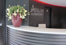 Avalon Waterways Illumination - River Cruises / Abonneefleur heeft voor Avalon Waterways de groenstyling verzorgd voor de Illumination.