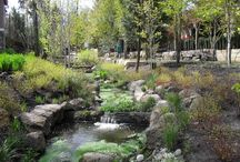 Seattle Gardening & Landscape Design / Gardening & landscape design in the Seattle area - with so much natural landscape surrounding us, a well thought-out plan for even the smallest garden design is essential.