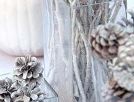 Celebrate: Winter Decor