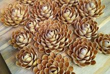 цветы скорлупа