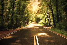 way / blog post http://nicolegalpern.co/post/104246316396/way