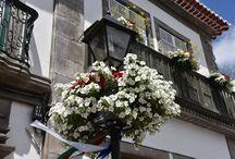 Kaskady kwiatowe