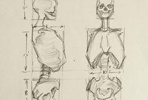 anatomy,body part