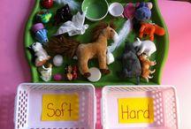 Preschool: Sensorial / by Sarah Calvert