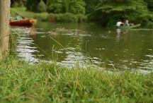 Batcombe Vale Campsite Videos