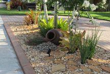 Garden ideas / Succulents