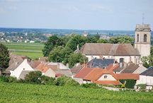 Domaine Lejeune / Visite du vignoble et des chais au Domaine Lejeune en Bourgogne Réservez avec winetourbooking.com