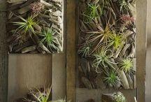 Gartenkunst aus Treibholz