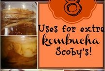 SCOBY Uses
