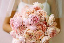 Wedding Bouquets | Blush / by Jennifer Kahane