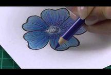 Coloring -Techniques