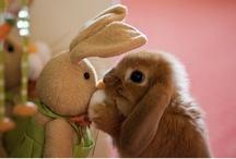 Easter ♥ / by Kathy Hoss-Tidwell