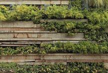 OUTDOORS--Landscape /Gardens vertical /Green walls /Plant walls /Pergolas