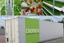 Container farm ideas