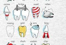 Dentist / by Shannon Le Fevre