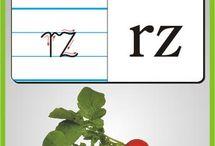 Abecadło -polskie litery z obrazkami