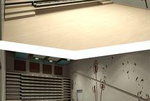 Auditorium Space / Spaces for lecture halls, theaters, etc