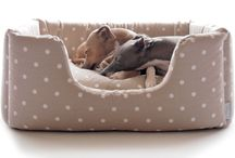 Snuggle up with Charley Chau / Beautifully designed, brilliantly functional dog beds for the most stylish of snoozes.