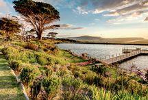 Best picnic spots in Cape Town