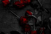 Rose ♥ *-*