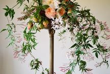 floral board: jasmine vine / by The Perfect Petal