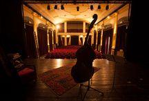 """ViVA VERDI! / La nostra casa è il Teatro Verdi di Firenze. La nostra curiosità ci porta a scoprire come sono le """"case degli altri"""" dedicate al Maestro in giro per l'Italia. E non solo."""