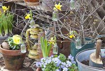 kevät, spring, 春