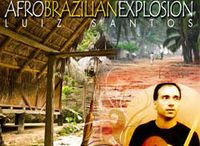 Afro Brazilian Explosion / The art of expressing a variety of afro-indian nuances through a jazz artform which embodies a deep precision in rhythmical counterpoint between the cultures and merging into a modern world concept. From cool jazz to free jazz, samba to maracatu. Many roots from Brazil like baiao, frevo, maxixe, xote, carimbo, maracatu, afoxe & forro.