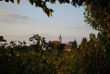 """Slovenia / I nostri viaggi - """"Autunno Dorato"""""""