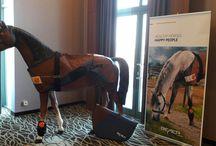 BEMER VET for horses / Ez állati jó! BEMER terápia lovak részére - keringésjavítás, stresszkezelés, nyugtatás, teljesítményfokozás, verseny előtti energetizálás, , immunrendszer erősítése,anyagcsere javítása Bővebb információért keress meg: Lehoczky Enikő +36 70 424 00 16 bemer(kukac)eleteroforras.hu www.eleteroforras.hu #bemerterápia #bemervet #bemerforhorses #bemerlovaknak #loterapia #lovasok #lovakgyogyitasa #loverseny #lovasversenyek  BEMER Veterinary Line NEW - BEMER VET lovak számára